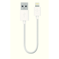 Belkin 15Cm Charge/Sync Cble Iphone/Ipad