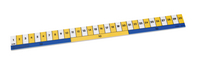 Early Learning Ruler